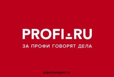 Обзор сервиса ПРОФИ.РУ