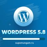 Вышел WordPress 5.8. Что нового?